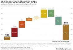 This graph shows that our accumulated carbon emissions have not being absorbed by nature.