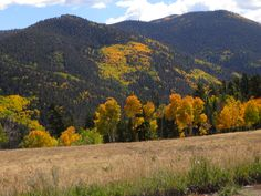 Fall 2014. Colorado