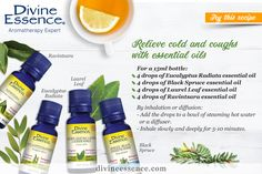 Natural cough and cold relief with essential oils
