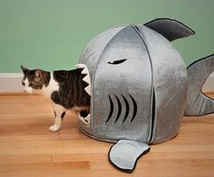 this is awesome, and I probably need one for the cat that I don't have yet.
