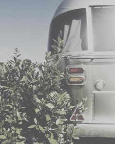 last caress >ca'savio, venice, italy  #airstream #italy #casavio #venice #italyairstream #mobilemag #agameoftones #huffpostgram #royalsnappingartists #rsa_vsco #huntgram #huntgramitaly #guardiantravelsnaps #igworldclub #moodygrams #illgrammers #lifeofadventure #wethevisitors #lifestyle #travel #glamping #luxury #vsco #vscocam