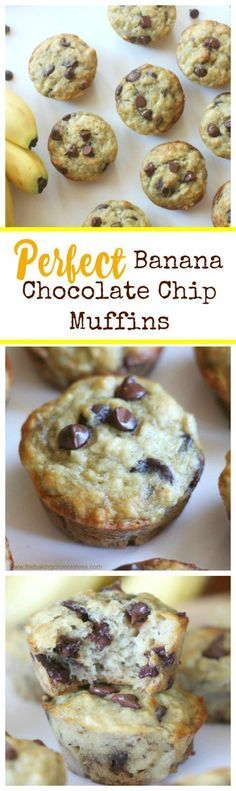 Perfect Banana Chocolate Chip Muffins are such and easy and delicious make ahead breakfast ideas or after school snacks.
