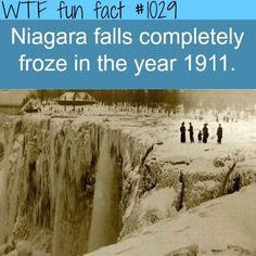 Niagara falls frozen completely   MORE OF WTF-FUN-FACTS are coming HERE funny and weird facts ONLY