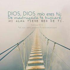 Jesus, mi alma busca tu enseñanza todos los días y la ayuda de Dios. <3