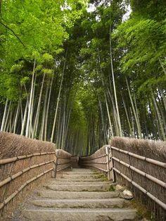 Kyoto Japón