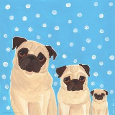 The Pug Trio - Original Pug Painting by Claire Chambers / Chickenpants Studio Your Paintings, Original Paintings, Original Art, Pug Illustration, Pug Photos, Pug Art, Gouache, Pugs, The Originals