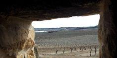 Viñedos de #Rioja Alavesa vistos desde el interior de un guardaviñas
