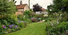 Primula pulverulenta AGM - Mealy primrose, Candelabra primula - Norfolk Cottage Garden