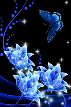 iphone wallpapers background lock screens - blue butterfly on blue roses Wallpaper Flower, Screen Wallpaper, Wallpaper Backgrounds, Blue Roses Wallpaper, Blue Butterfly Wallpaper, Beautiful Wallpaper, Mobile Wallpaper, Beautiful Butterflies, Beautiful Flowers
