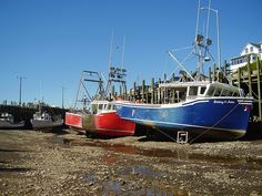 Boats Hall's Harbour Low Tide
