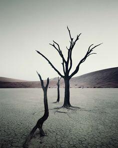 JIMMY NELSON - ...triste: manque un élément de la vie: l'eau