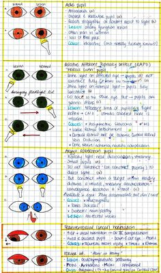 16 Best USMLE STEP 1 images in 2014 | Medical, Med school, Medical