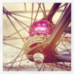 Fixed gear Fixed Gear, Montreal, Bike, Instagram Posts, Bicycle Kick, Fixie, Trial Bike, Bicycle