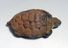 Turtle vesta case. Found February 2017