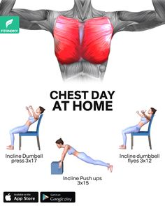 The Effective Pictures We Offer You About at home workouts for women no equipment A quality picture Chest Workout Women, Fitness Workout For Women, Workout Plan For Women, Chest Workouts, Home Chest Workout, Shoulder Workout Women, Chest Exercises, Gym Workout Videos, Gym Workout For Beginners