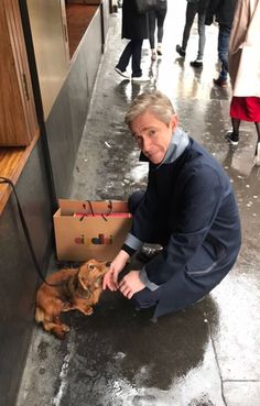 I relate so much to the adoring expression in this dog's eyrs as he is looking at Martin Freeman.
