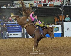 Rodeo & Country Music – What else do you need? Do You Need, Rodeo, Country Music, Horses, Amp, Animals, Animales, Animaux, Animal
