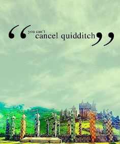 """Harry Potter and the chamber of secrets- Oliver Wood: """"You can't cancel quidditch. I watched this movie today! Mundo Harry Potter, Harry Potter Quotes, Harry Potter Fandom, Harry Potter World, Tsundere, Daniel Radcliffe, Whistler, Slytherin, The Golden Trio"""