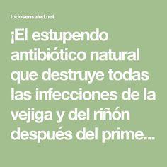 ¡El estupendo antibiótico natural que destruye todas las infecciones de la vejiga y del riñón después del primer uso! - Todos En Salud