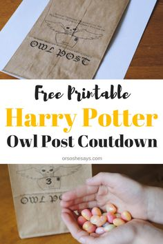 Harry Potter Universal Studios - Owl Post Vacation Countdown (she: Adelle) Harry Potter Owl, Harry Potter Universal, Vacation Countdown, Vacation Games, Vacation Ideas, Orlando Vacation, Cruise Vacation, Disney Cruise, Vacation Destinations