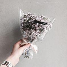 . Lesson Order Katalk ID vaness52 E-mail vanessflower@naver.com . #vanessflower #vaness #flower #florist #flowershop #handtied #flowergram #flowerlesson #flowerclass #바네스 #플라워 #바네스플라워 #플라워카페 #플로리스트 #꽃다발 #부케 #원데이클래스 #플로리스트학원 #화훼장식기능사 #플라워레슨 #플라워아카데미 #꽃수업 #꽃스타그램 #부케 #花 #花艺师 #花卉研究者 #花店 #花艺 . . #드라이플라워 #dryflower . . 몽글몽글 시네신스 미니다발