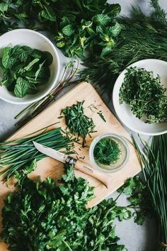 Back to Basics: Storing Fresh Herbs food photography, food styling (Ingredients Flatlay) Add flavor and interest to your meals with fresh herbs! Here are some tips and personal favorites when it comes to storing fresh herbs. Food Styling, Food Photography Styling, Photography Tricks, Photography Lighting, Photography Camera, Photography Accessories, Photography Reviews, Cooking Photography, Fruit Photography