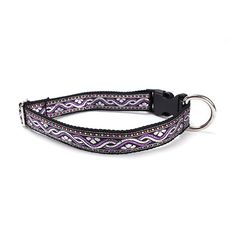 Sacred Pet Boutique : Dog Collar - Viking Silver Amethyst