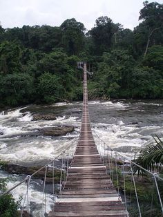 Mana suspension bridge over Mana river - Official entry into Korup National Park, Cameroon African Countries, Countries Of The World, Zimbabwe, Places To Travel, Places To See, Places Around The World, Around The Worlds, Rio, Cap Vert