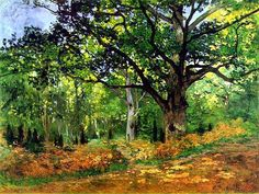 """Claude Monet (1840-1926) """" Forêt de Fontainebleau, le chêne Bodmer."""""""