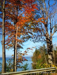 Rockwell Bay, South Hero, Vermont