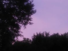 When I see a purple sky I whisper today goodbye. #purple #sky #silouhette #clouds #new #newpost #awesome #amazing #summer #sunset #planetearth #photography #pretty #picture #photo #world #trees #tree #color #instagram #gorgeous