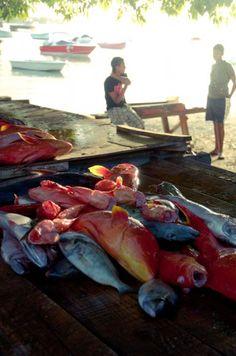 Grand Baie fish market