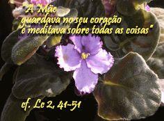 LEITURA ORANTE: Lc 2,41-51 - Um Coração que realmente ama: Imacula...