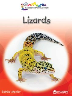 $3.95 Lizards - Grade Level 1: Learn some fun facts about lizards!