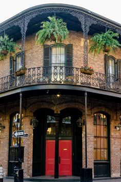 Spend an evening exploring the haunted side of New Orleans with one of the best ghost tours in New Orleans. Ghosts, Vampires and Crime. The best ghost tours in New Orleans, wanderingcrystal, ghost tour New Orleans, spooky things to do in New Orleans, Explore New Orleans, NOLA things to do, Travel NOLA, New Orleans haunted locations, haunted things to do in New Orleans, haunted places in New Orleans, Louisiana things to do, dark history in New Orleans, New Orleans Dark Tourism #NewOrleans #Spooky Tours New Orleans, New Orleans Travel, Ghost Tour, Haunted Places, French Quarter, Tourism, United States, Good Things, Explore