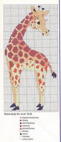 Giraffa 2