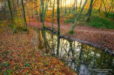 #Autumn time in #Germany   #landscape #nature #photography
