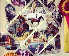 Horse memo board idea. I want to do this!!!