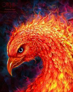 Phoenix Head by Christos Karapanos amorphisss I love the intensity captured in the eye