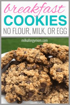 Dairy-free, egg-free, nut-free, wheat-free breakfast cookies great for picky kids and toddlers. Recipe at Milk Allergy Mom! Wheat Free Recipes, Dairy Free Recipes, Allergy Free Recipes For Kids, Easy Recipes For Kids, Toddler Recipes, Gluten Free, Kid Recipes, Toddler Food, Lactose Free