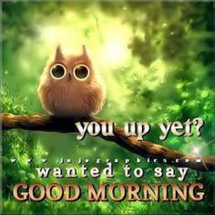 Here are 25 amazing good morning quotes to get your day started. Don't forget to send good morning wishes to a friend with one of our good morning quotes! Funny Good Morning Quotes, Good Day Quotes, Good Morning Funny, Morning Greetings Quotes, Good Morning Coffee, Good Morning Sunshine, Good Morning Picture, Good Morning Messages, Good Morning Good Night