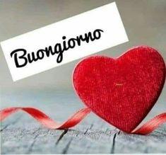 Italian Memes, Good Morning, Sicilian, Video, Minions, Bullet Journal, Night, Instagram, Happy