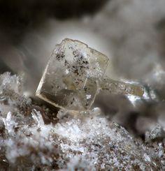 Whiteite-(CaMnMn), Hagendorf-South, Oberpfalz, Bavaria, Germany. Fov 0.6 mm. Photo Christian Rewitzer