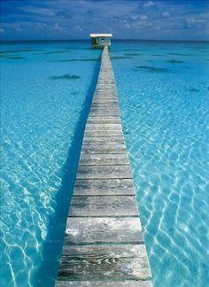 take a short walk off a long pier