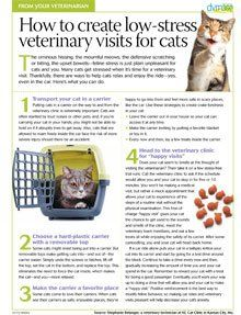 Client handout: How to create low-stress veterinary visits for cats