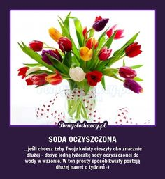 DOMOWY TRIK NA DŁUGO STOJĄCE KWIATY W WAZONIE :) Mish Mash, Simple Life Hacks, Tulips Flowers, Home Hacks, Good Advice, Fun Learning, Happy Mothers Day, Beauty Care, Good To Know