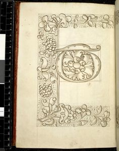 """Letter """"E"""" from the Macclesfield Alphabet Book, patterns and designs, foliate design, 1500's."""