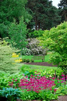 A Bench in Ness Gardens | Flickr - Photo Sharing!