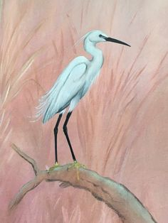 Bird, Animals, Painting, Decor, Pintura, Animales, Dekoration, Decoration, Animaux