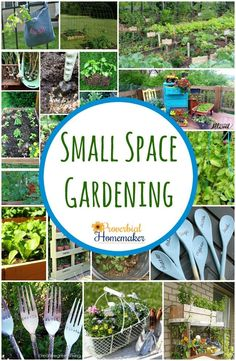 Small space gardenin...